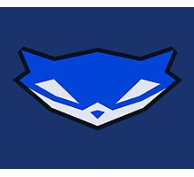 Sly Cooper Gauge 1 Photographic Print