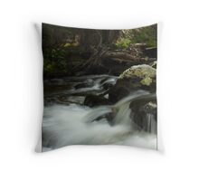 Crazy Woman Canyon - Bighorn National Forest, Wyoming Throw Pillow