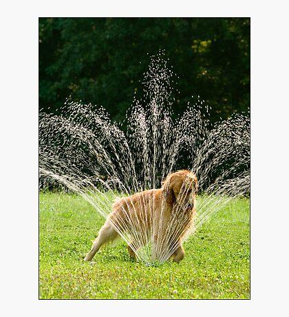 Sedona Sprinkler Photographic Print