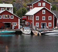 Fishing village on a rainy day 2 by intensivelight