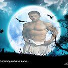 Apollo Moon by Hiragraphic
