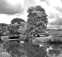 River Nore at Thomastown by Martina Fagan