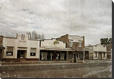 Molong Shops by garts