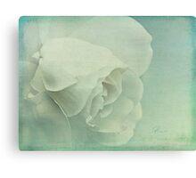l'eau de rose Canvas Print