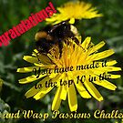 Bee and Wasp Passions Banner by Orangic