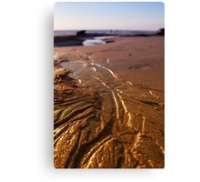 Tidal Evidence Canvas Print