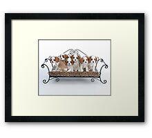 Briana's Pups Framed Print