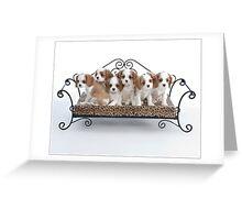 Briana's Pups Greeting Card