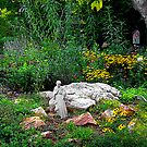 St. Francis in the Garden by Kate Eller