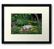 St. Francis in the Garden Framed Print