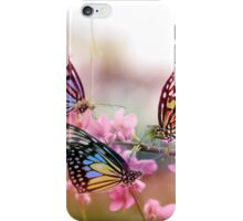 butterflies conference iPhone Case/Skin