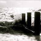 Bound Ashore by Lou Wilson