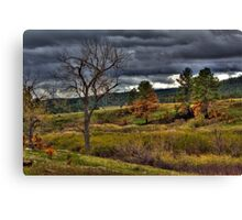 Before the Storm Canvas Print