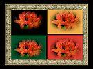 Awesome Azaleas by MotherNature