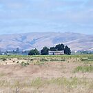 San Joaquin Valley Landscape by Polly Greathouse