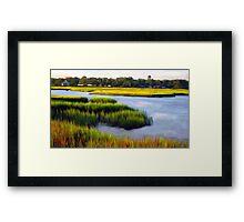 Marsh View Framed Print