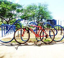 Bike Rack- By Diamond Head Mountain by Anna Chudko