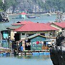 Halong Bay - Vietnam by BreeDanielle