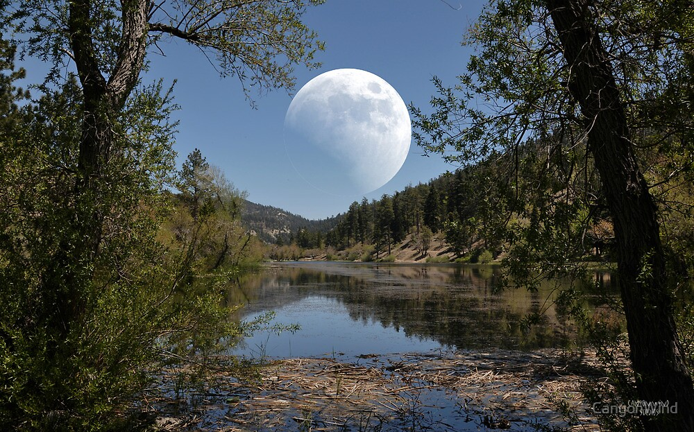 """"""" Moon Over Tranquility Lake """" by CanyonWind"""