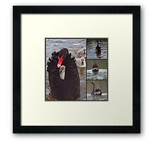 The Ponder Bay Ferry . Framed Print