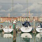 Venice, Italy by Gregory L. Nance