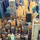 New York City by Chris Armytage™