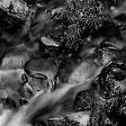 3D Rocks and Water by ZeroCat85