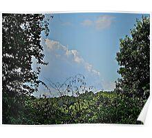 Monster Head Cloud Intrudes Between Tree Tops Poster