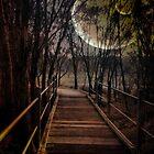 Bridge to Wonderland by AlyZen