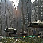 Bryant Park, New York by J Forsyth