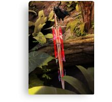 Raven guarding the Chaos Sword Canvas Print