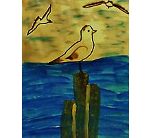 Seagulls coming in to perch, Bird series, watercolor Photographic Print