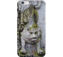 Stone Tiger iPhone Case/Skin