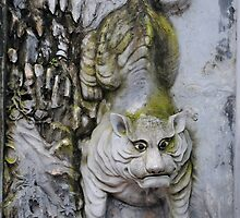 Stone Tiger by Christopher Colletta