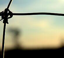 Farm Fence by TylerBelisle