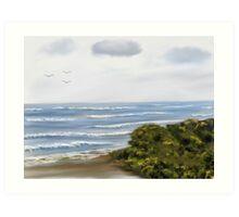 Port Fairy Beach Art Print