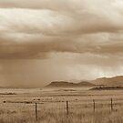 Herfsreën – Karoo – Autumn rains by Rina Greeff