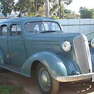 36 Chev...Its suicide baby! by Suzanne Newbury