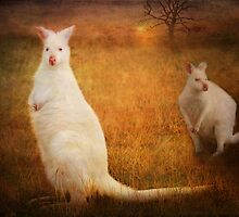 Distant relatives by Lissywitch