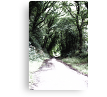 Green pathways - Stone Cross Canvas Print