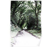 Green pathways - Stone Cross Poster