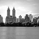Central Park New York  City by Raoul Isidro