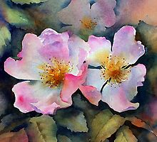 Dog roses by Ann Mortimer