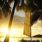 Fiji Time by Daniel  Archer