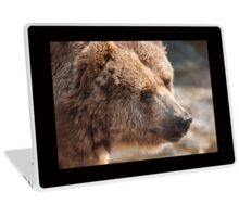 bear in the forest Laptop Skin