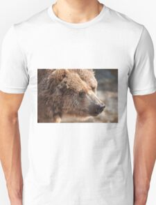 bear in the forest Unisex T-Shirt