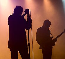 Echo & The Bunnymen by Alison McLean