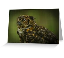 Great Horned Owl Profile Greeting Card