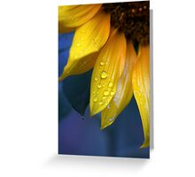 Sundrops Greeting Card