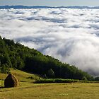 National Park Tara - clouds down!  by Aleksandar Topalovic